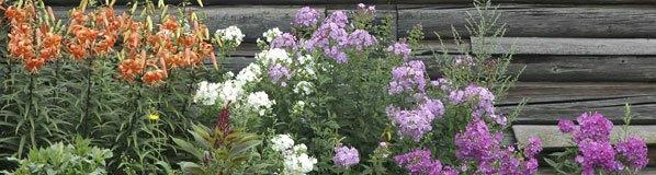 Organic Gardening Topics