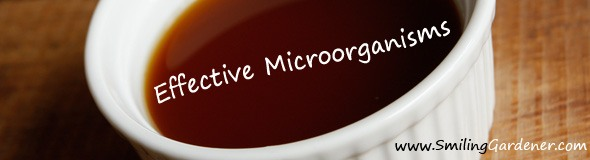 Effective Microorganisms (EM)