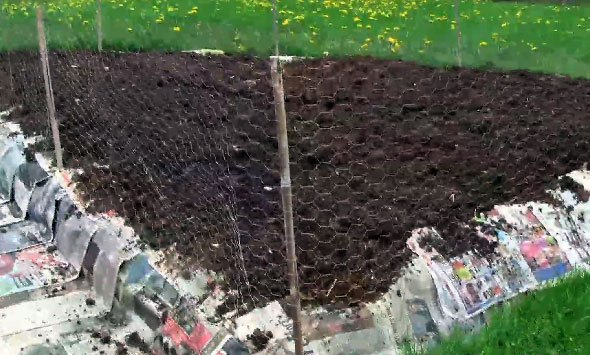 Organic Vegetable Garden Sheet Mulch