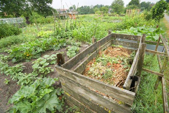 Organic Composting 101